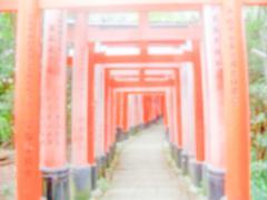 Defocused Background of Fushimi-Inari Temple, Kyoto, Japan. Intentionally blu - stock photo