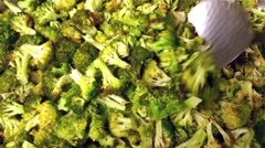 Fried green broccoli, brassica oleracea Stock Footage