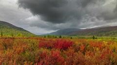 Salekhard fall season landscape mountain meadow panorama 4k time lapse russia Stock Footage
