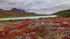 Salekhard fall season landscape panorama 4k time lapse russia Stock Footage