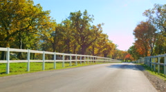 Stock Video Footage of Lipica, country side in autumn