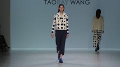 Taoray Wang Fashion Show Fall 2015 Collection NYFW 05 Stock Footage
