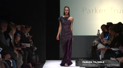 The Art Institute Show Fall 2015 Collection NYFW Parker Trumble. Stock Footage