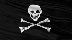 Stock Video Footage of Black Pirate Flag With Skull and Bones