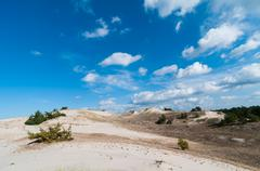 Sand Dunes And Grass Vegetation Background - stock photo