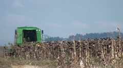 Farm sunflowers being harvested with combine harvester Stock Footage