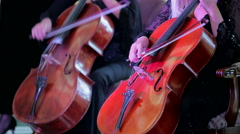 Two Musicians Playing Cello At Concert Stock Footage