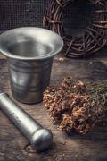 Dried medicinal herb Stock Photos