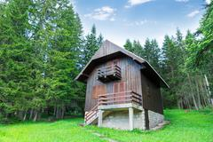 Old wooden house in the forest Stock Photos