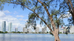 View of Brickell from Key Biscayne - stock footage