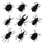 Colorful insects vector biology collection Stock Illustration