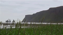 Sea Stacks behind Tall Grass on Rocky Coast in Iceland Establishing Shot Stock Footage