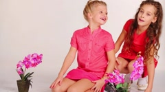 Two pretty girls in red sits on floor in white studio with flowers Stock Footage