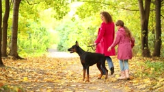 Back of girl with mother walking with dog in autumn park - stock footage