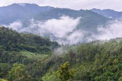 Morning mist with mountain in Chiang Dao National Park ,Chiang Mai, Thailand. - stock photo
