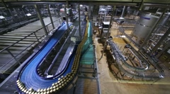 Conveyor with moving canned beer in workshop in big brewery Stock Footage