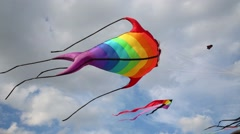 Soaring kites bright fishes in blue sky at summer day Stock Footage