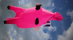 Soaring bright kite Big pink pig in blue sky at summer sunny day Stock Footage