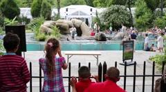 Show of fur seals in dolphinarium New York Aquarium Stock Footage