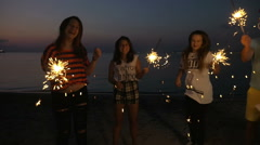 Friends enjoying New Year party at the seaside Arkistovideo