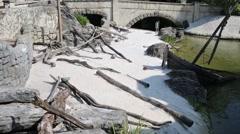 River shore and bridge in Adventureland of Disneyland Stock Footage