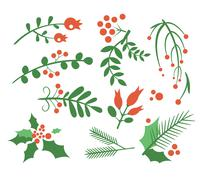 Red Berries, Branches Fir and Leaves. Vector Illustration Set Stock Illustration