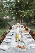 Long table set with plates and glasses food and drink in a garden. Stock Photos