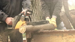 Men cutting wood logs with chainsaw - stock footage