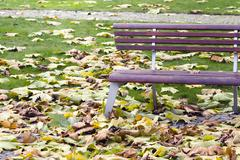 Bench in the park fallen leaves in autumn Stock Photos