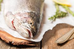 Fresh trout with spices and seasonings Stock Photos