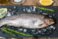 Stock Photo of fresh trout with rosemary and lemon