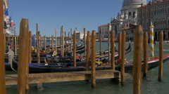 Gondolas near Cathedral Santa Maria della Salute in Venice Stock Footage