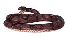 Dangerous Anaconda on White - stock illustration
