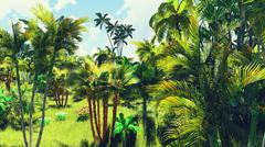 Stock Photo of Lush vegetation in jungle