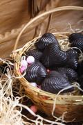 Home made chocolates in basket Stock Photos