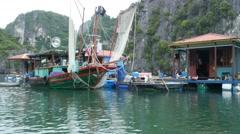 Floating fishing village vietnam thailand traditional wood canoe kayak tour 4k Stock Footage