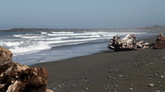 Waves On Beach With Large Driftwood Logs Stock Footage
