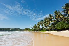 Idyllic beach. Sri Lanka Stock Photos