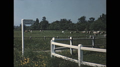 Stock Video Footage of Vintage 16mm film, 1963, Normandy, countryside