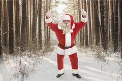 Santa Claus in a good mood - stock photo