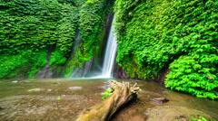 4K Timelapse. Old tree in the water near Munduk waterfall Stock Footage