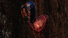 "Ungraded: Heart-Shaped Ballons With Caption ""I Love You"" and Picture of Teddy Stock Footage"