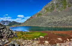Patch of green grass on edge of a mountain lake - stock photo