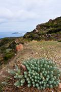 Autumn landscape. Nisyros, Greek island - stock photo