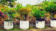 Beautiful Stone Flowerbeds Stock Photos
