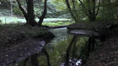 Stream glade flowing shade countryside rural Stock Footage