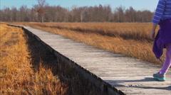 Child walking down boardwalk through a marsh Stock Footage