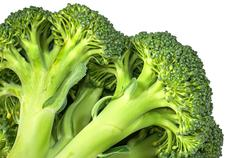 Closeup inflorescence of fresh broccoli - stock photo