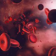 Blood Cells - stock illustration