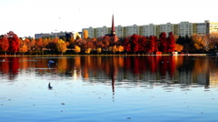 Autumn afternoon in a park with the tower of the orthodox church, gulls, sound Stock Footage
